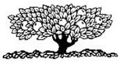 logo-nt